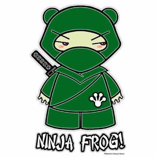 Ninja Frog! Photo Sculpture