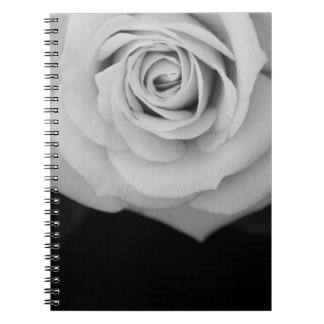 Noir Rose I Photo Notebook
