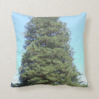 Norfolk Island Pine Cushion