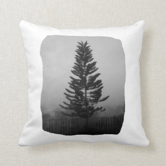 Norfolk Pine Black and White Picture Foggy Cushion