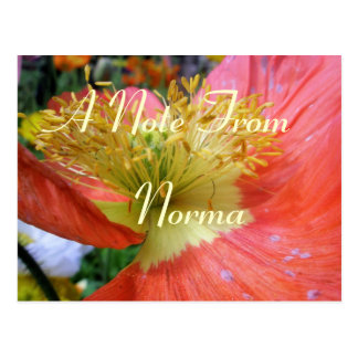 Norma Postcard