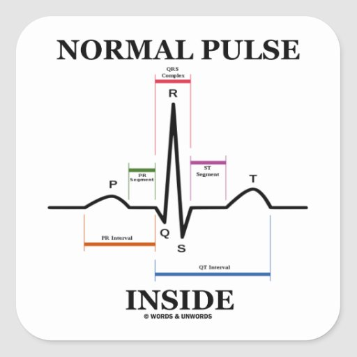 Normal Pulse Inside (ECG/EKG Electrocardiogram) Sticker