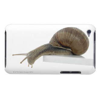 Normalsnail iPod Case-Mate Cases