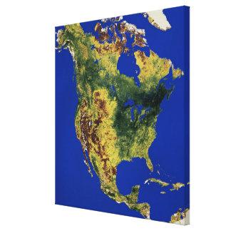 North America 2 Gallery Wrap Canvas