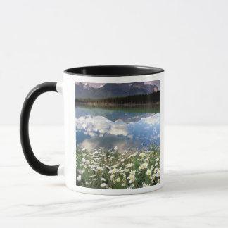 North America, Canada, Alberta, Banff National 2 Mug