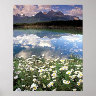 North America, Canada, Alberta, Banff National 2 Poster