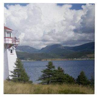 North America, Canada, Newfoundland and 2 Tile