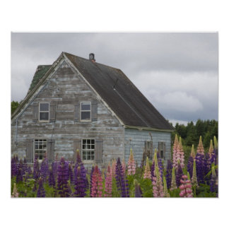 North America, Canada, Prince Edward Island, Poster