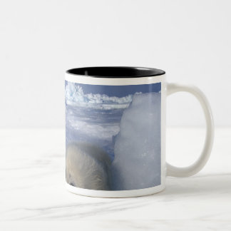 North America, Canada, Quebec, Iles de la Two-Tone Coffee Mug