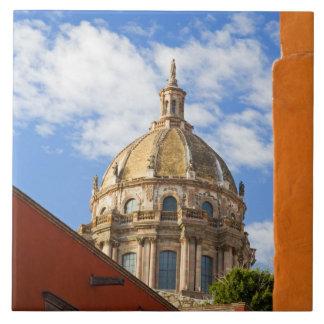 North America, Mexico, Guanajuato state, San 2 Tile
