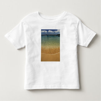 North America, Mexico, State of Guerrero, Ixtapa Toddler T-Shirt