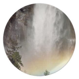 North America, U.S.A., California, Yosemite Plate