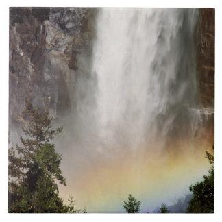 North America, U.S.A., California, Yosemite Tile