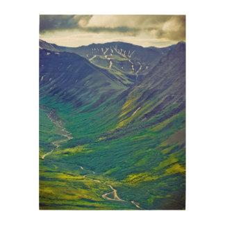 North America, United States, Us, Northwest Wood Canvases