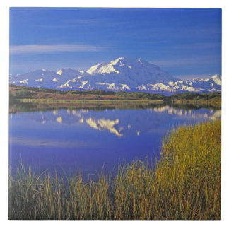 North America, USA, Alaska, Denali NP, Tile