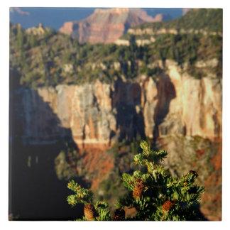 North America, USA, Arizona, Grand Canyon Tile