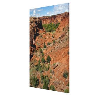 North America, USA, Arizona, Navajo Indian Canvas Prints