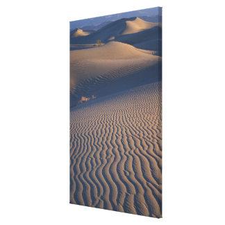 North America, USA, Califorinia, Death Valley Stretched Canvas Print