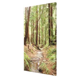 North America, USA, California, Big Sur, 3 Gallery Wrapped Canvas