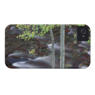 North America, USA, Colorado, San Juan Case-Mate iPhone 4 Case