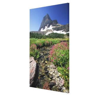North America, USA, Montana, Glacier National 4 Canvas Prints