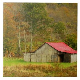 North America, USA, North Carolina, rural Tile