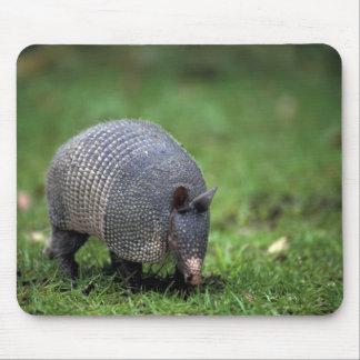 North America, USA, South Carolina, Camberli Mouse Pad
