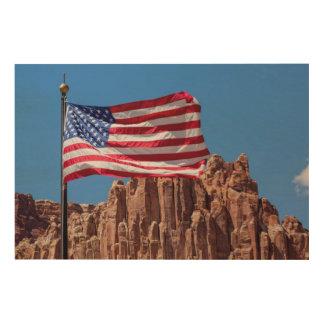 North America, USA, Utah, Torrey, Capitol Reef Wood Canvas