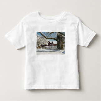 North America, USA, WA, Whidbey Island. 2 Tee Shirt