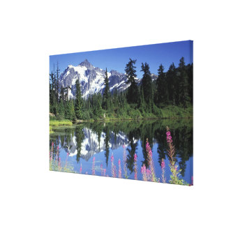 North America, USA, Washington, Heather Meadows Stretched Canvas Prints
