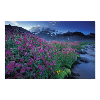 North America, USA, Washington, Mt. Rainier 6 Art Photo