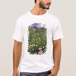 North America, USA, Wyoming, Yellowstone 2 T-Shirt