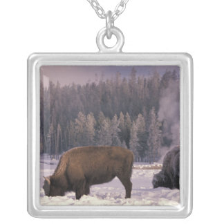 North America, USA, Wyoming, Yellowstone NP, Silver Plated Necklace