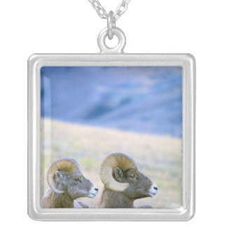 North America, USA, Wyoming, Yellowstone Silver Plated Necklace