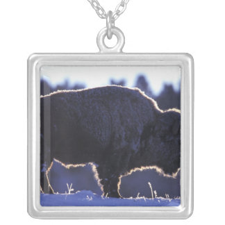 North America, Wyoming, Yellowstone National Silver Plated Necklace