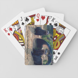 North American River Otter Playing Cards