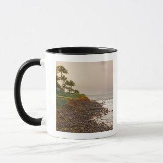 North Coast, Maui, Hawaii, USA Mug