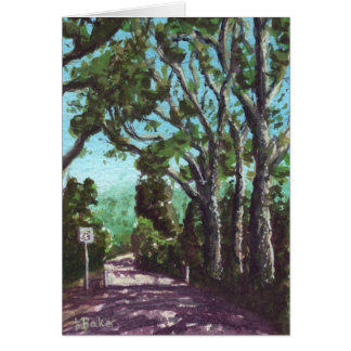 North Head Trees Card