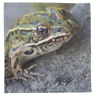 Northern Leopard frog, See-through Island, Napkin