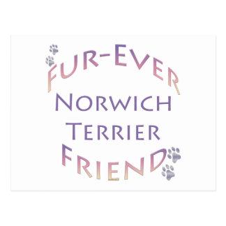 Norwich Terrier Furever Postcard