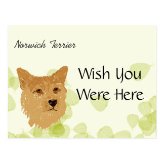 Norwich Terrier ~ Green Leaves Designs Postcard