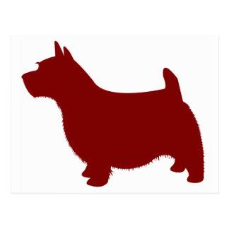 Norwich Terrier Postcard