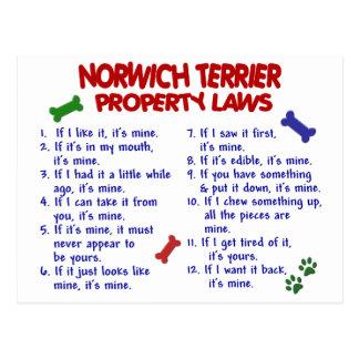 NORWICH TERRIER Property Laws 2 Postcard
