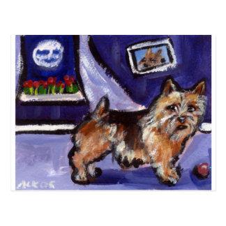 Norwich Terrier senses smiling moon Postcard
