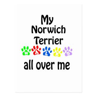 Norwich Terrier Walks Design Postcard