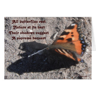 Note Card All Butterflies Rest By Ladee Basset