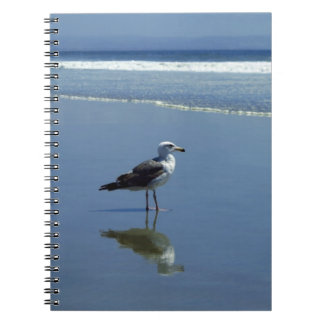 Notebook / Personal Journal - seagull on the beach