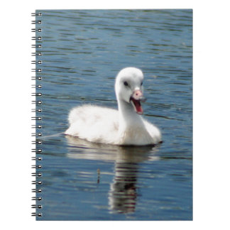 Notebook with photo of cute, sassy baby swan.