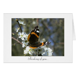 Notecard with Butterfly Design Greeting Card