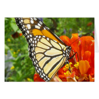 Notecard with Monarch Butterfly Note Card